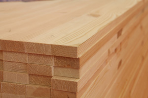 Siberian Larch Fencing - A Grade - Battens 28 mm Thick